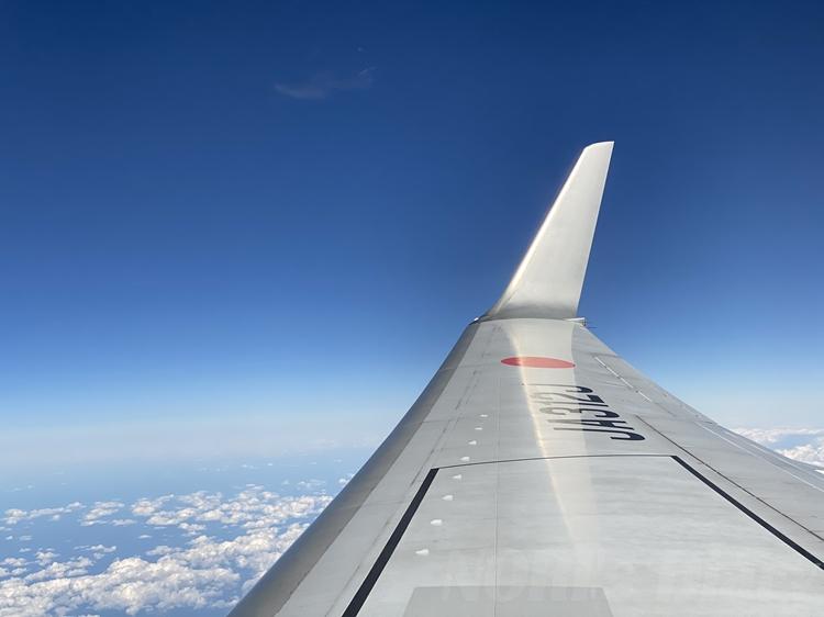 JAL主翼