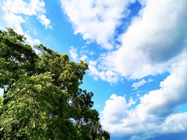 木津川の空
